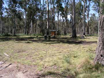 Horse Swamp Camping Area