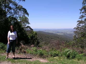 Knobs Lookout