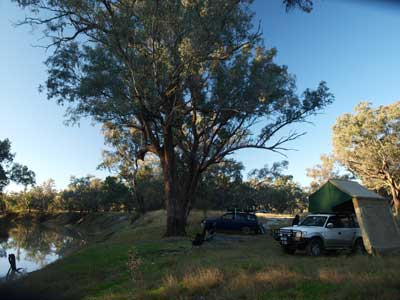 Walgett Common