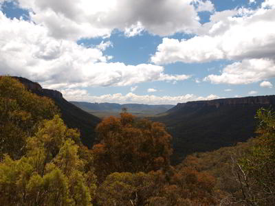 Newnes Valley